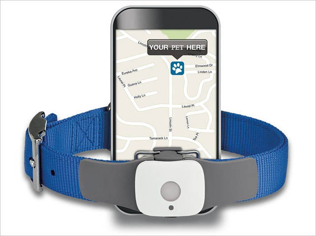 pet-trackers-for-your-pet