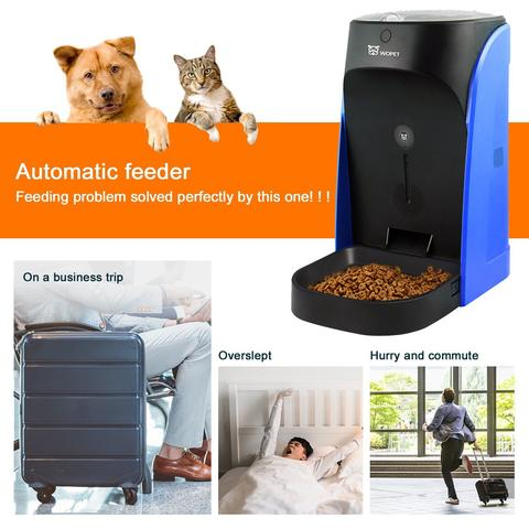 The 5 Best Automatic Dog Feeder Distributors Amazing