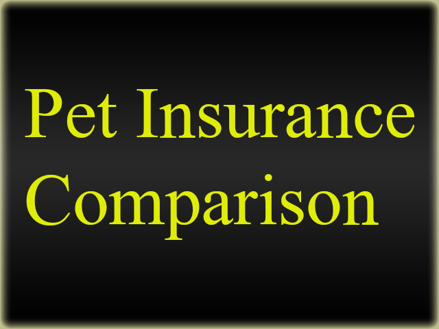 Pet-Insurance-Comparison